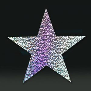 Cardboard Cutout Star holographic silver